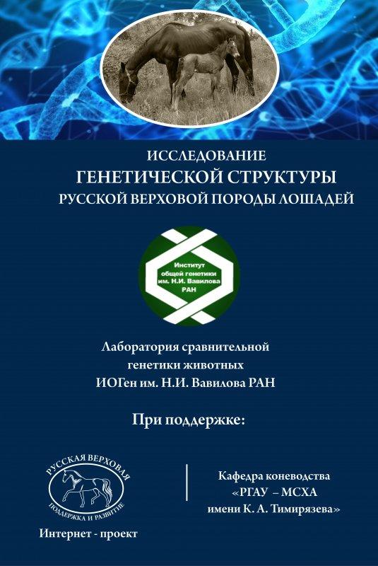 Баннер ДНК исследование.jpg