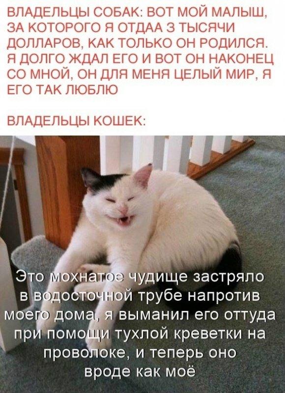 FKhbDJuQDwA.jpg