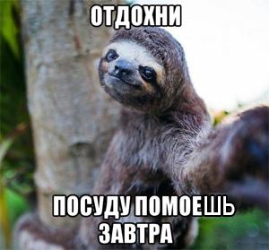 lenivec-5_164908627_orig_.jpg