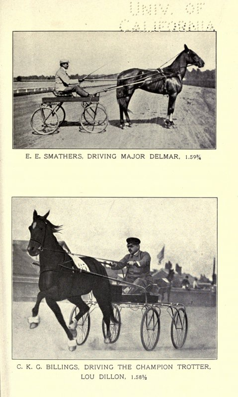 The_trotting_and_the_pacing_horse_in_America_BHL19918166.jpg